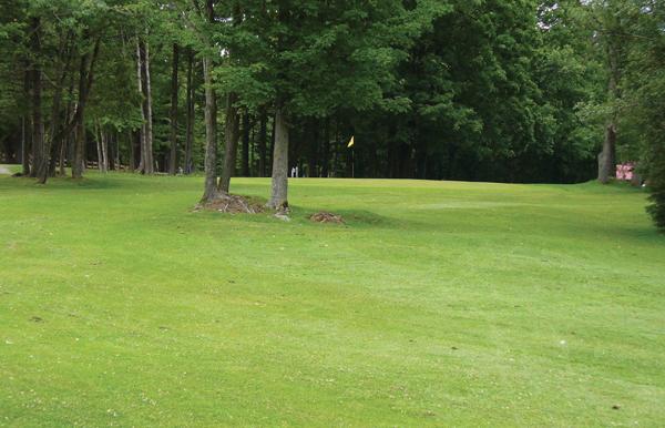 Golf Bury