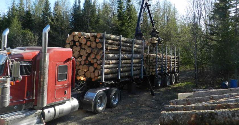 Augmentation de prix du bois de construction